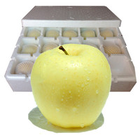 文果 山東煙臺黃元帥蘋果 11-12個裝 約5斤