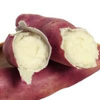 知味 白心紅薯 5斤