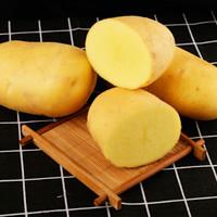 青漢羊 荷蘭土豆內蒙古馬鈴薯新鮮 5斤
