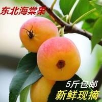海棠果沙果東北特產2.5kg