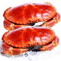 英國熟凍面包蟹600-800g(10月份捕撈) *3件