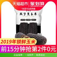 崇明島2019當季黑玉米棒16根糯黏粘新鮮真空即食非東北甜糯玉米粒 *2件