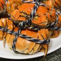 吃货福利 : 清蒸大闸蟹畅吃,刺身级阿根廷红虾不限量!上海虹桥郁锦香宾馆大闸蟹+海鲜自助晚餐