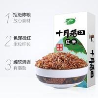 十月稻田紅米紅大米五谷雜東北粗糧紅糙米八寶粥原料搭小米480g