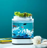 有品米粉節、再降價 : 畫法幾何 迷你懶人魚缸