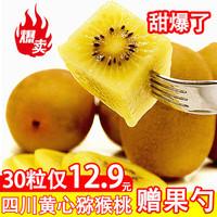 鲜菓篮 黄心猕猴桃 5斤 单果70-90g
