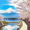 三井住友 樂游富士旅行保障計劃