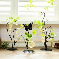 创意绿萝水培植物玻璃瓶客厅创意个性花瓶摆件家居客厅插花装饰品