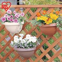 爱丽思IRIS 凸纹壁挂花盆 园艺可挂盆 环保塑料花盆 2.5L