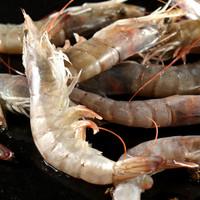 京东PLUS会员 : 鲜多邦 厄瓜多尔白虾 盒装80-90只/2kg