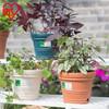 爱丽思IRIS 大号彩色花盆创意凸纹阳台室内外大口径欧式塑料花盆
