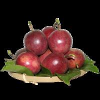 雙品   新鮮百香果 中果 凈果5斤裝