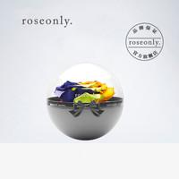 roseonly(诺誓)七彩永生玫瑰花球永生花礼盒生日礼物女生送女朋友 经典花球-许愿-mini