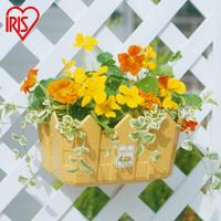 愛麗思IRIS 塑料加厚柵欄式壁掛花盆陽臺掛壁吊蘭盆壁掛花籃 250