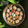 綠倫 16~17顆 生石花多肉植物組合 (帶盆)