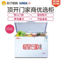 XINGX/星星BD/BC-256E 商用冷柜冰柜 冷藏冷凍轉換柜 通體大容量