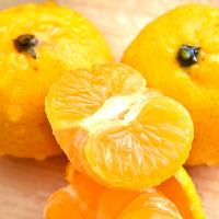 fulong南豐蜜桔正宗貢桔2斤裝 新鮮薄皮甜桔子現季水果砂糖小橘子