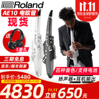 Roland羅蘭AE10電吹管電薩克斯風帶音源揚聲器可用電池sax民樂風格