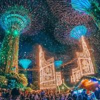 当地玩乐:一年一度!2019年 新加坡滨海湾花园 圣诞仙境门票