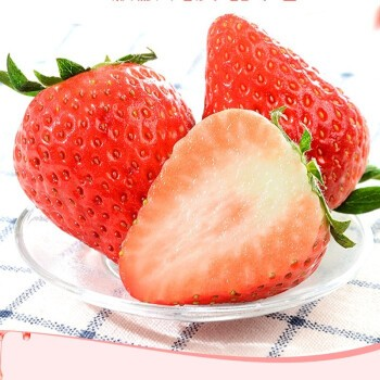 砀宁果品 大凉山 红颜草莓 3斤装
