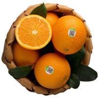 農夫山泉 17.5°橙鉑金果 5kg *2件