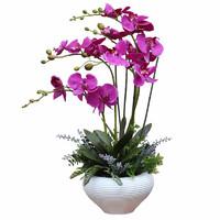 知根高仿真花蝴蝶蘭套裝仿真花盆栽假花裝飾花客廳絹花擺設花藝