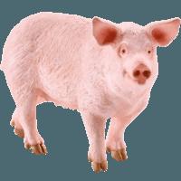 Schleich 思樂 13782 農場動物 豬