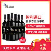 智利進口紅酒 智象赤霞珠干紅葡萄酒750ml*6瓶 整箱裝 *2件