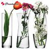 進口玻璃瓶水培植物容器綠蘿養花花瓶干花插花客廳擺件裝飾花盆