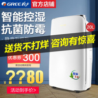 格力(GREE)除濕機 家用空氣 空氣凈化 地下室 抽濕機 家庭除濕器 祛濕器