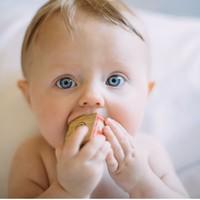 养娃更轻松:辅食应该怎样添加,好用的辅食工具有哪些?