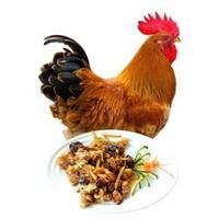 潭牛 海南文昌雞 110天小公雞 凈重約2斤 *2件