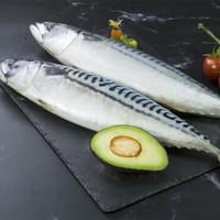 禧美 冰岛青花鱼 2-3条 1kg  *5件
