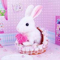 小兔子 毛絨玩具