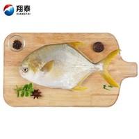 翔泰 冷凍無公害金鯧魚  550g/袋 BAP認證全程可追溯 1條裝  含Ω3 生鮮魚類 火鍋食材  海鮮水產 *6件