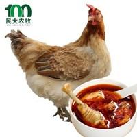 民大农牧 农家谷饲散老母鸡 单只净重约1000g *2件