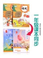 金枝葉 一年級上冊下冊字帖