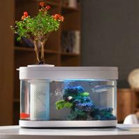 有品米粉節、再降價 : 畫法幾何 兩棲生態懶人魚缸 38.2*16.6*22.9cm