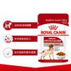 法國皇家Royal Canin MEAW中型犬成犬濕糧 100g *10件