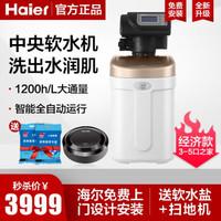 海爾(Haier)中央軟水機 HSW-WS6(B)1.2T