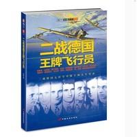 《二戰德國王牌飛行員》