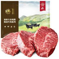 春禾秋牧 加拿大AAA经典原切牛排套餐1.16kg(6份) 谷饲安格斯雪花牛肉 生鲜含料包 *2件