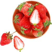 草莓大赏——又到草莓季,聊聊那些关于草莓的二三事
