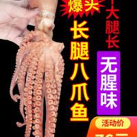 尚致 鲜活爆头大章鱼整只 500g