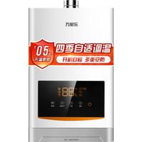 京东PLUS会员:macro 万家乐 JSQ30-D31 燃气热水器 16升