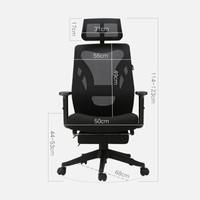 1日0点、61预告:Hbada 黑白调 HDNY138BMJ 甲壳虫经典设计电脑椅
