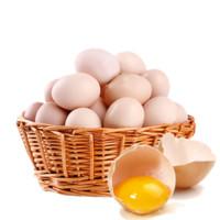 中原老家乡  鲜鸡蛋土鸡蛋 40枚/箱