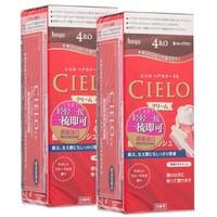 硬核补贴:Cielo 宣若 EX按压式 植物泡沫染发膏 80g*2盒装
