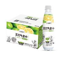 天地精华 卡曼橘味 苏打气泡水饮料 480ml*15瓶