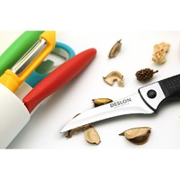DESLON 德世朗 水果刀不锈钢瓜果刀 非折叠款